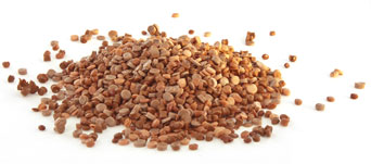 Plastics Regenerate Dieffe - PPC TERRACOTTA-COLOURED PELLETS MFI